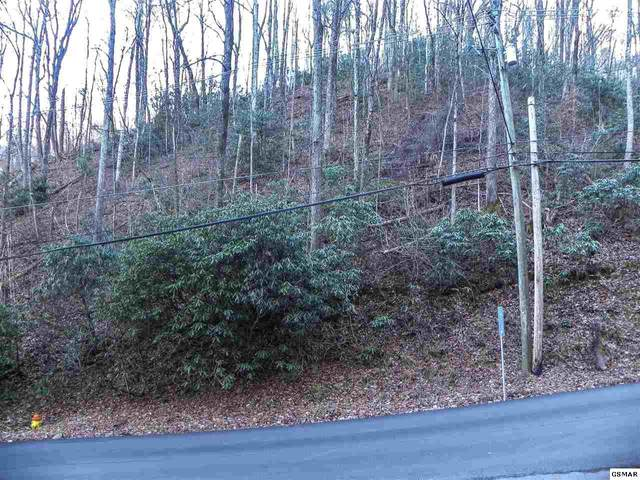 Lot 5 Heiden Drive, Gatlinburg, TN 37738 (#231644) :: Century 21 Legacy