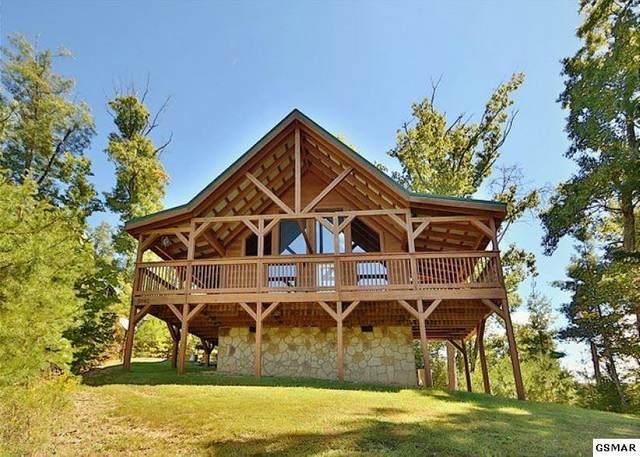 2042 Bird Ridge Rd, Sevierville, TN 37876 (#231695) :: Billy Houston Group