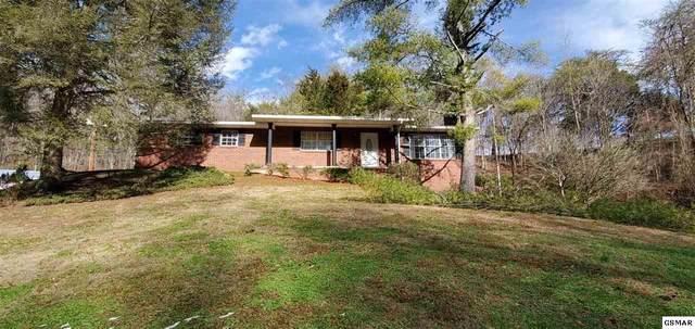 12452 Chapman Hwy, Seymour, TN 37865 (#231699) :: Prime Mountain Properties