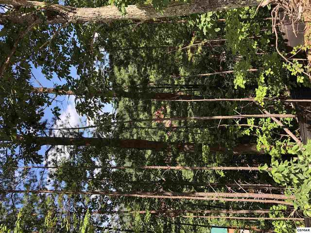 Lot 81 Parkside Retreat Way Lot 81, Pigeon Forge, TN 37863 (#231703) :: Prime Mountain Properties
