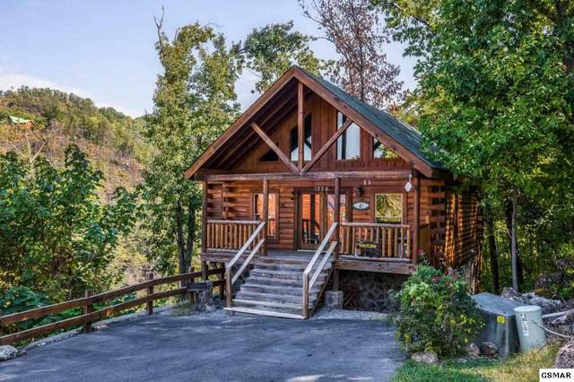 1226 Bird Nest Way Swim N' Bear, Sevierville, TN 37862 (#231724) :: Tennessee Elite Realty