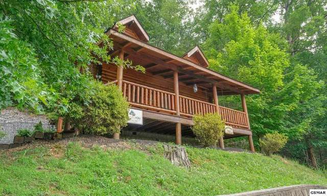 3225 Smoky Ridge Way A Time To Remem, Sevierville, TN 37862 (#231727) :: Colonial Real Estate