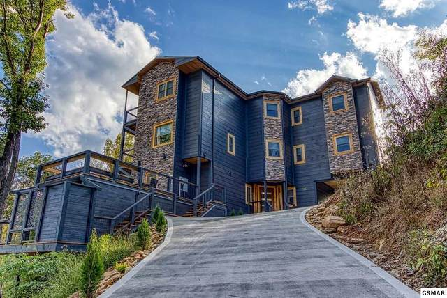 868 Cliff Branch Road, Gatlinburg, TN 37738 (#231728) :: The Terrell Team