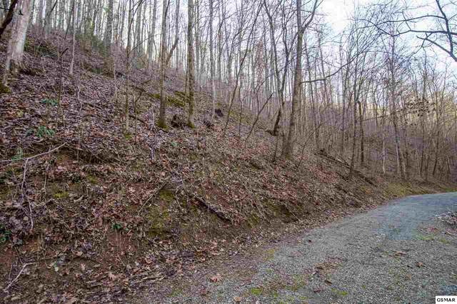 Lot 41 Feld Wynde Close Way, Sevierville, TN 37862 (#231741) :: Colonial Real Estate