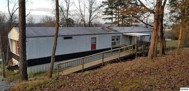 1736 Walnut Hill Ln, Sevierville, TN 37876 (#231755) :: Century 21 Legacy