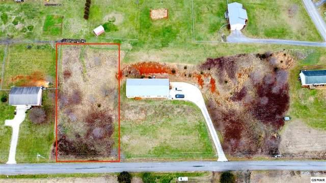 Lot 7 Ebenezer Road, Chuckey, TN 37641 (#231780) :: Billy Houston Group