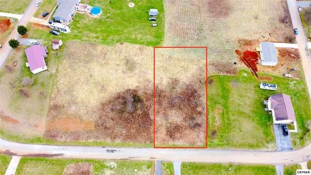 Lot 61 Ebenezer Loop, Chuckey, TN 37641 (#231785) :: Suzanne Walls with eXp Realty