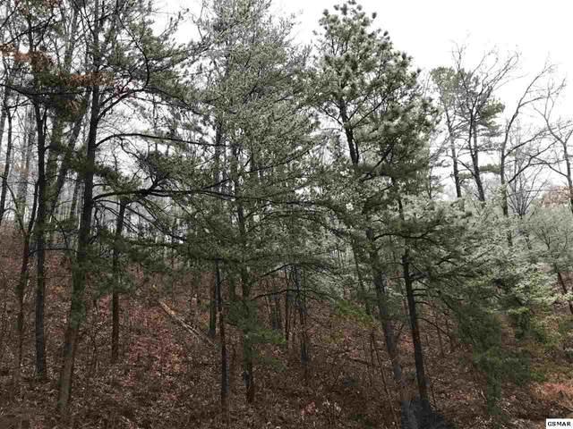 Lot 005A Overholt Trail, Sevierville, TN 37862 (#231795) :: Billy Houston Group