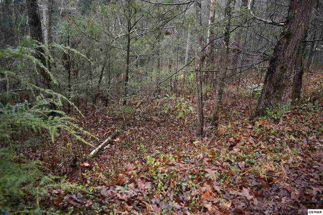 Powdermill Road Lot 27, Gatlinburg, TN 37738 (#231835) :: Colonial Real Estate