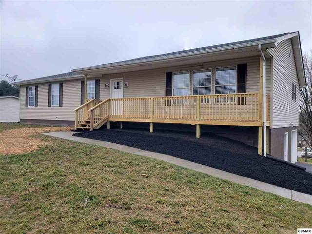544 W Hwy 11E, New Market, TN 37820 (#231837) :: Suzanne Walls with eXp Realty
