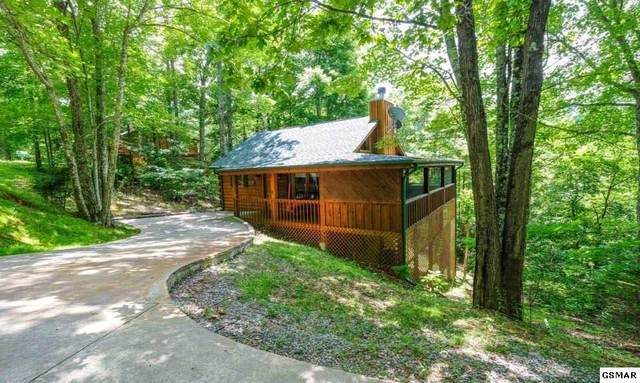 1552 Sky View, Sevierville, TN 37876 (#231860) :: Suzanne Walls with eXp Realty
