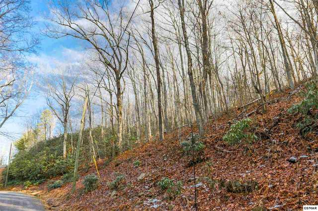 Lot 12 Overholt Trl, Sevierville, TN 37862 (#231872) :: Suzanne Walls with eXp Realty