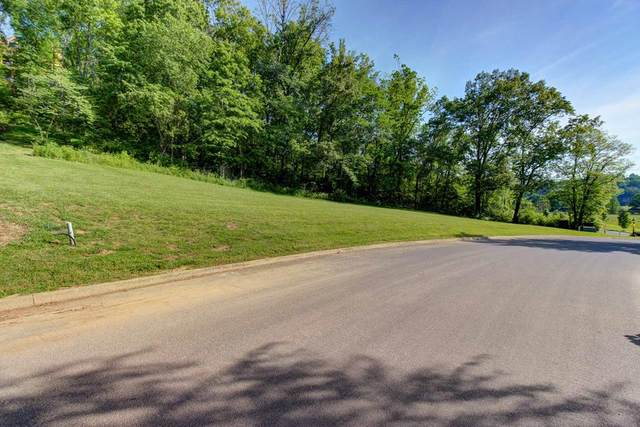 Lot 194R Wilderness Path Way, Sevierville, TN 37876 (#240013) :: The Terrell Team