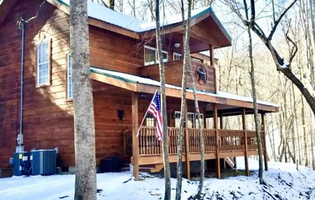 1026 Deep Hollow Rd., Gatlinburg, TN 37738 (#240065) :: The Terrell Team