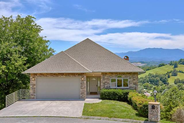 446 Maggie Mack Ln, Sevierville, TN 37862 (#240073) :: Colonial Real Estate