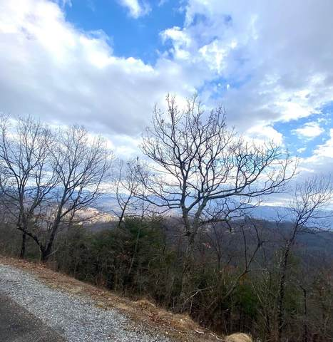 Lot 29 Laurel Top Way, Sevierville, TN 37862 (#240079) :: Billy Houston Group