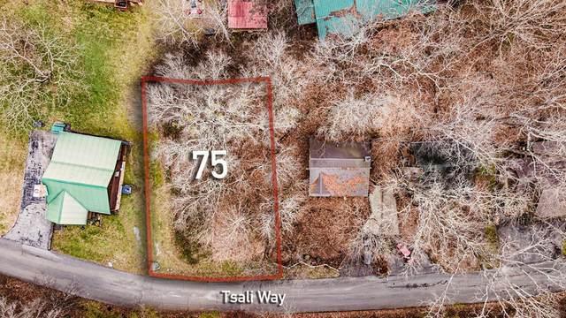 LOT 75 Tsali Way, Sevierville, TN 37876 (#240160) :: The Terrell Team