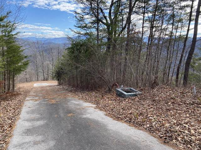 Lot 42w Long Rifle Rd, Walland, TN 37886 (#240208) :: Colonial Real Estate