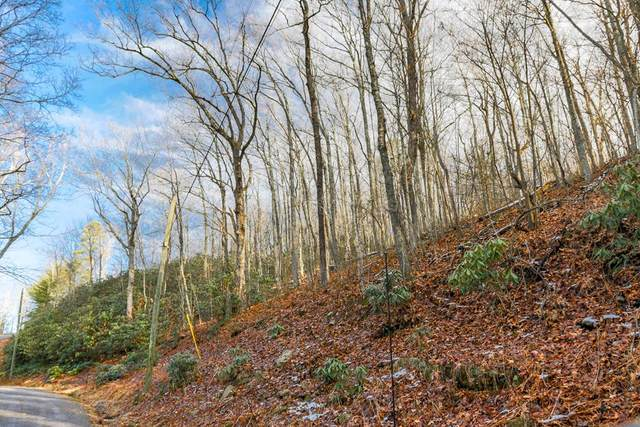 Lot 12 Overholt Tr., Sevierville, TN 37862 (#240209) :: Jason White Team | Century 21 Legacy