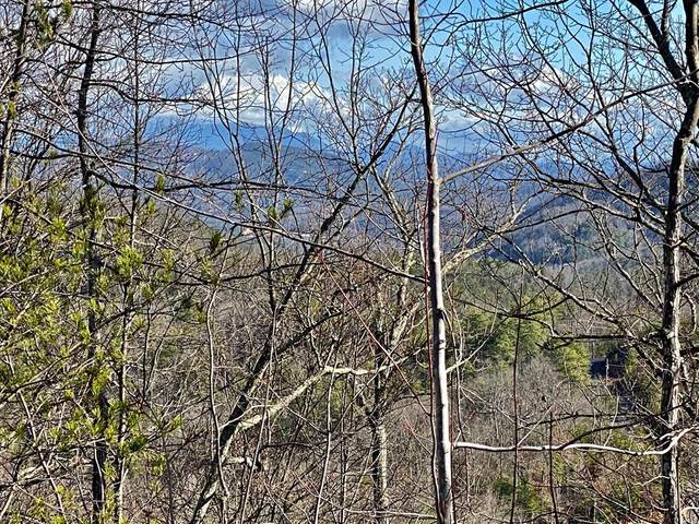 1829 Pinestand Ridge Way, Sevierville, TN 32862 (#240236) :: Suzanne Walls with eXp Realty