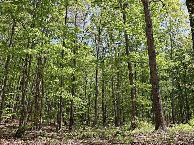 Lot 18 Grouse Ridge Road, Harriman, TN 37748 (#240241) :: Suzanne Walls with eXp Realty