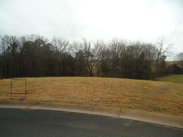 Lot 21 Legend View Court, Sevierville, TN 37876 (#240246) :: Colonial Real Estate
