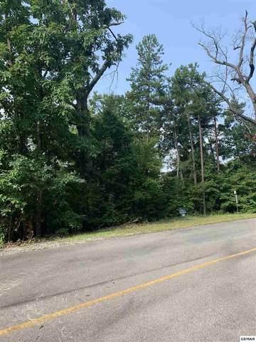 156 E Harmony Hill Lane, Sevierville, TN 37862 (#240259) :: Prime Mountain Properties