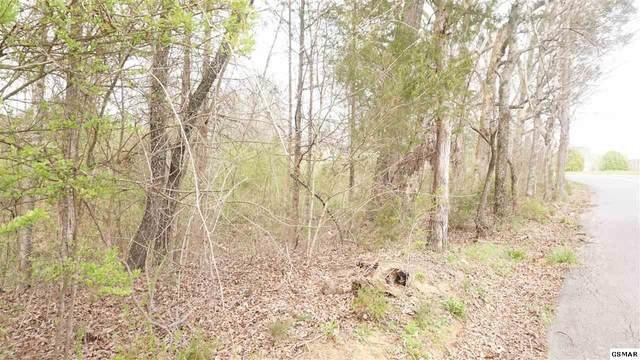 Lot 13 Flatwood Rd., Sevierville, TN 37862 (#240310) :: Jason White Team | Century 21 Legacy