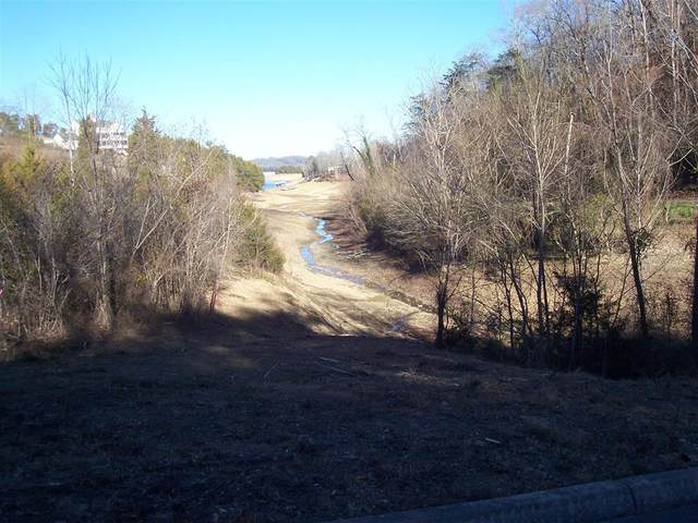 Lot 10, 11 Harbor Point Dr, Sevierville, TN 37876 (#240325) :: Jason White Team | Century 21 Legacy