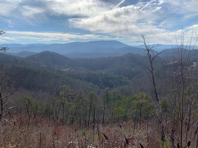 1060 Rayfield Hollow Rd, Sevierville, TN 27862 (#240326) :: Suzanne Walls with eXp Realty