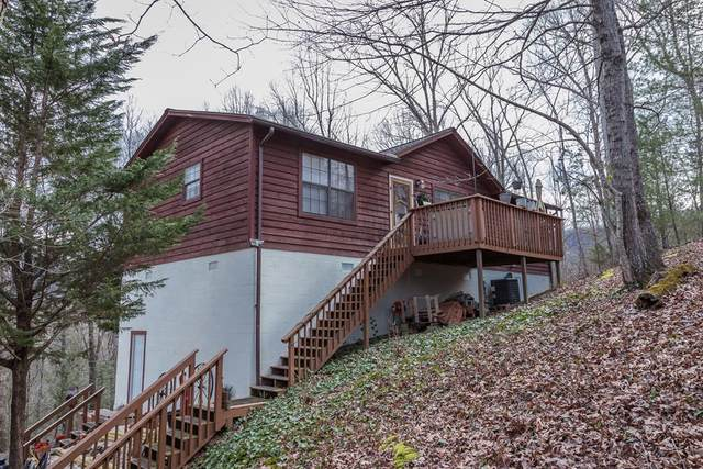 3530 Walker Lane, Sevierville, TN 37862 (#240359) :: Colonial Real Estate
