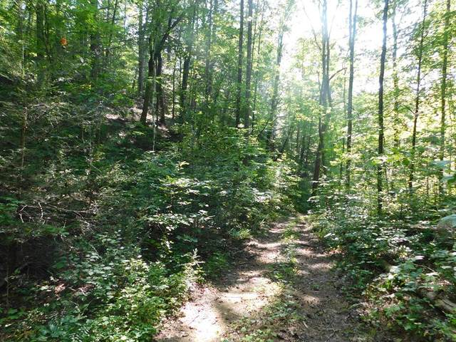 Jones Cove Rd - Off, Sevierville, TN 37876 (#240369) :: Colonial Real Estate