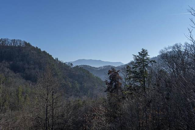Lot 18 Spence Mountain Loop, Sevierville, TN 37876 (#240377) :: Tennessee Elite Realty
