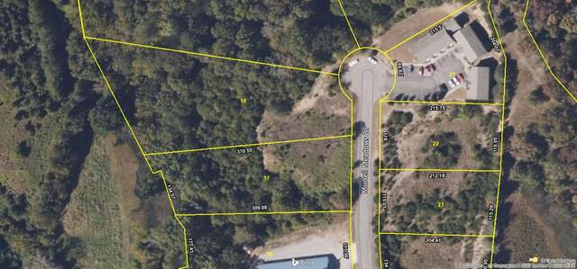 Lot 17 & 18 Murrell Meadows Dr., Sevierville, TN 37862 (#240388) :: Colonial Real Estate