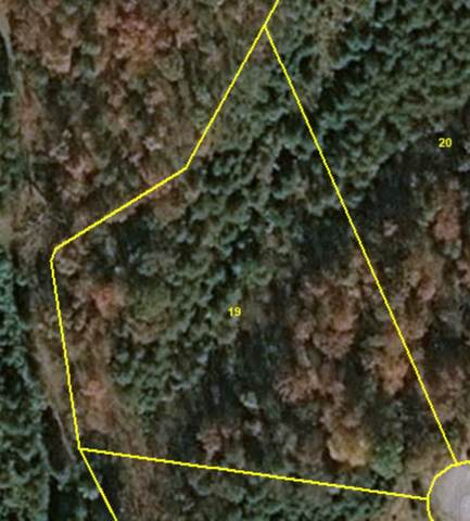 Lot 19 Murrell Meadows Dr., Sevierville, TN 37862 (#240390) :: Colonial Real Estate