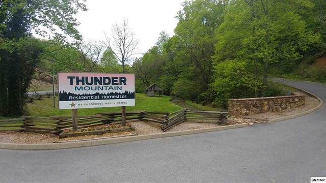 Lot 42 Storm Bringer Drive, Sevierville, TN 37862 (#240419) :: Colonial Real Estate