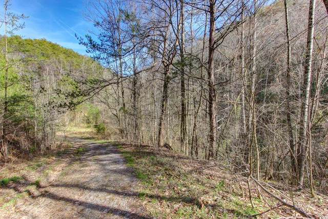 Lot 5 Cowden Spring Way, Sevierville, TN 37876 (#240440) :: Colonial Real Estate