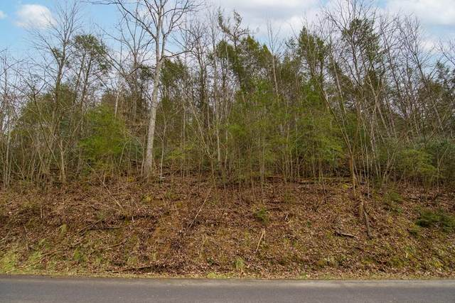 Lot Tr-1 Henry Town Road, Sevierville, TN 37876 (#240649) :: Century 21 Legacy