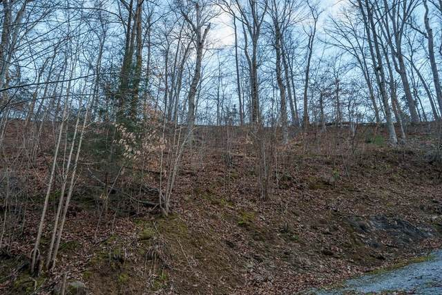 Lot Pt19 Dunn Hollow Road, Sevierville, TN 37862 (#240694) :: Century 21 Legacy