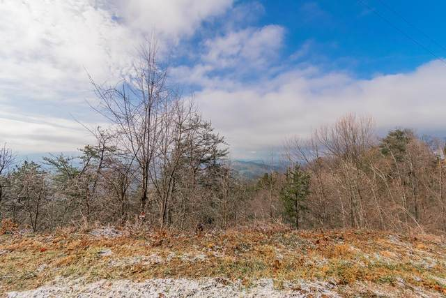 Lot 14 Aintree Drive, Sevierville, TN 37876 (#240784) :: Jason White Team | Century 21 Legacy