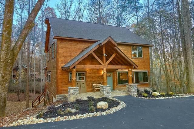 2231 Cub Circle Splash Mountain, Sevierville, TN 37862 (#240786) :: Colonial Real Estate