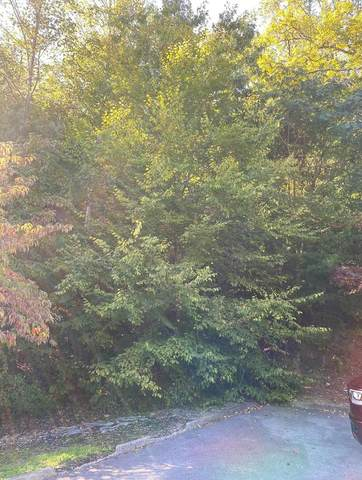 Lot 18 Blackthorn Trail, Sevierville, TN 37876 (#240804) :: Billy Houston Group