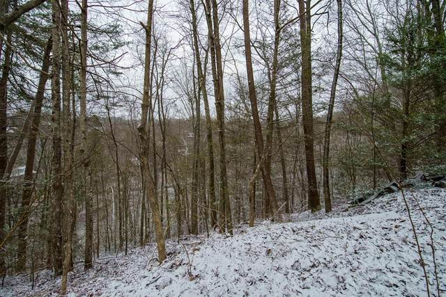 Lot 351A Rose Court, Sevierville, TN 37876 (#240828) :: Billy Houston Group