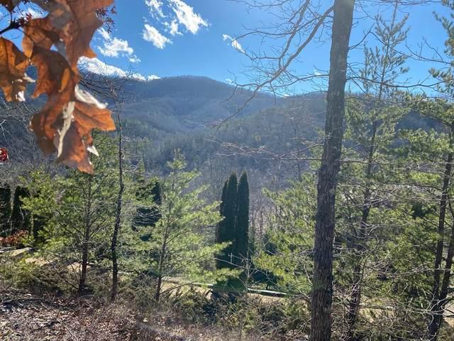 1547 Mountain Dreams Way, Sevierville, TN 37862 (#240845) :: Colonial Real Estate