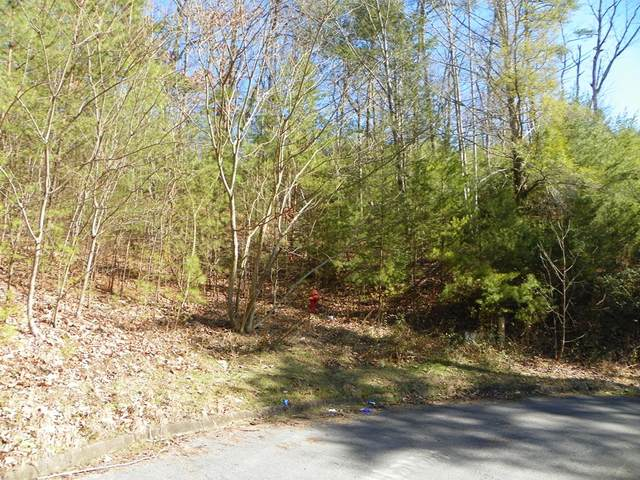 Shadow Ridge Dr, Sevierville, TN 37876 (#240866) :: Billy Houston Group