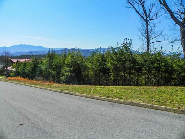 North Trail Dr, Sevierville, TN 37876 (#240867) :: Billy Houston Group