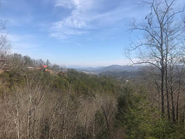 Lot 49 Cats Paw Ln, Sevierville, TN 37862 (#240870) :: Colonial Real Estate
