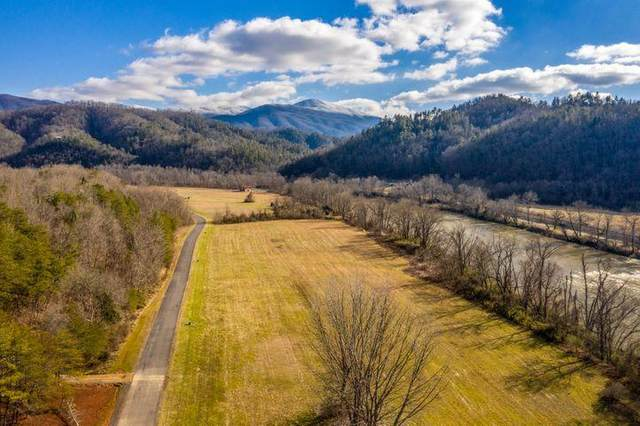 River Rapids Way Lot 34R, Del Rio, TN 37727 (#240885) :: The Terrell Team