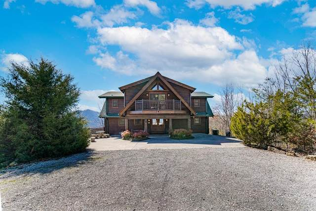 3005 Redtail Road, Sevierville, TN 37862 (#240907) :: Colonial Real Estate