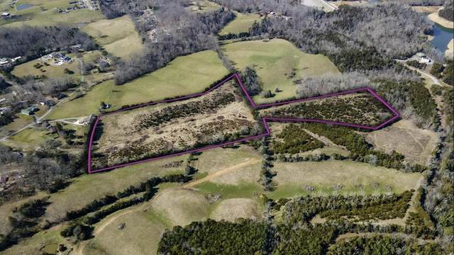 16.16 Acre Providence Hills Rd, Sevierville, TN 37876 (#240949) :: Colonial Real Estate
